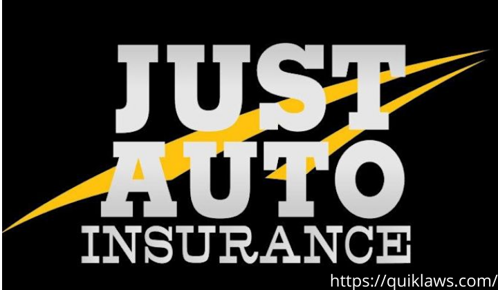 just auto insurance payment